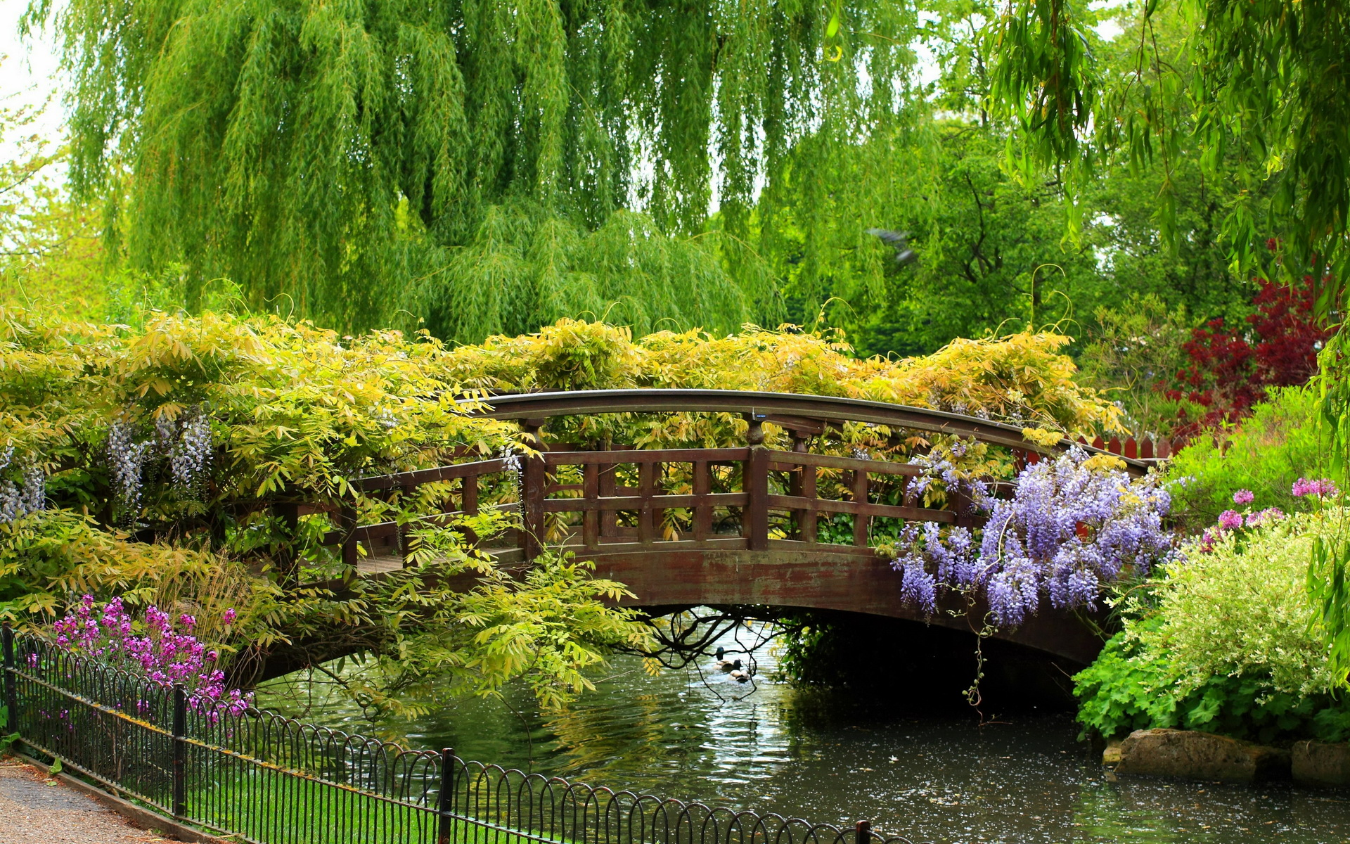 Beautiful-Decorations-Garden-Bridge-For-Your-Inspirations-Design-Queen-Marys-Garden-Bridge-Path-Willow-Park-Tree-Hd-Wallpaper