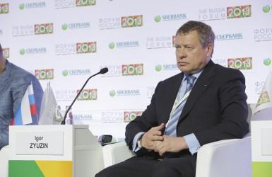 Владелец «Мечела» Игорь Зюзин испытывает серьезные финансовые трудности.