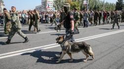 Пленные украинские военные на Донбассе.