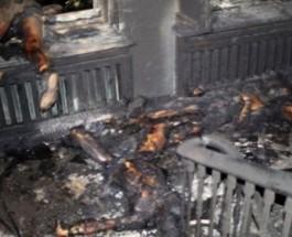 Заживо сожженные и застреленные в Одессе. Их не заметили в Кремле и Америке.