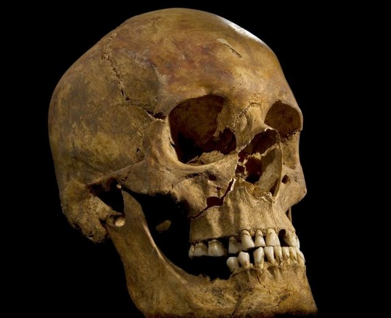 Король Ричарда III, его ли это череп?