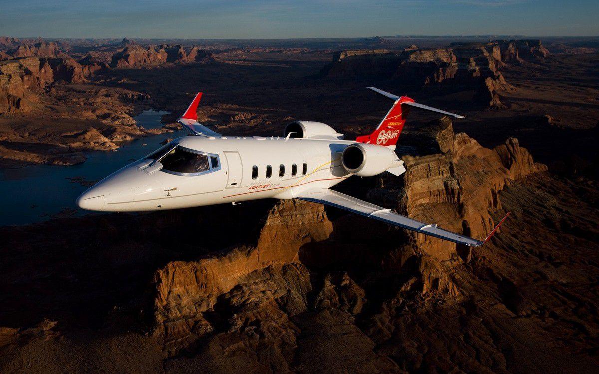 Частный самолет для любимой собаки.